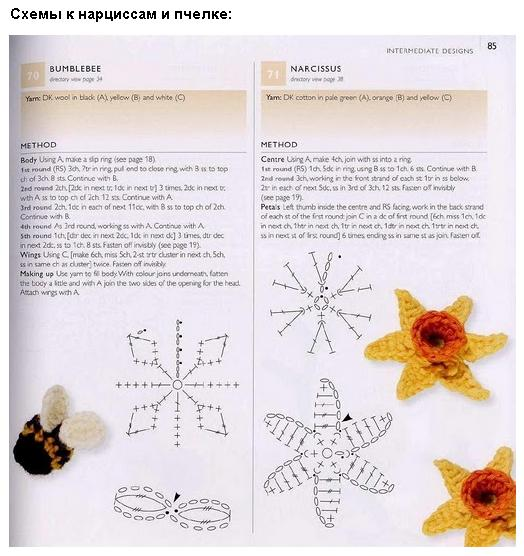 нарцисс и пчелка крючком (524x556, 49Kb)
