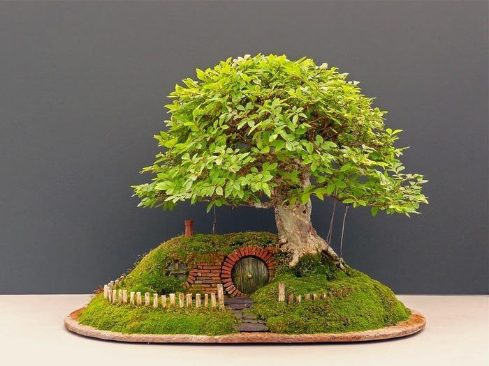 Крис Гис. Домик хоббита в стиле бонсай. Фотографии