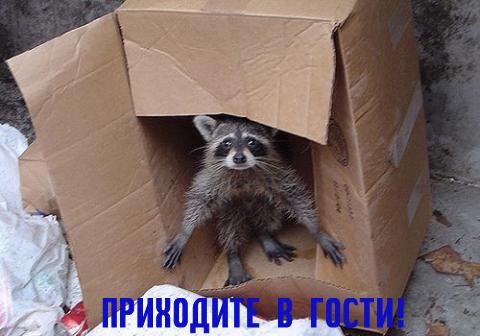 5f0c622d855_прих_в_гос (480x336, 146Kb)