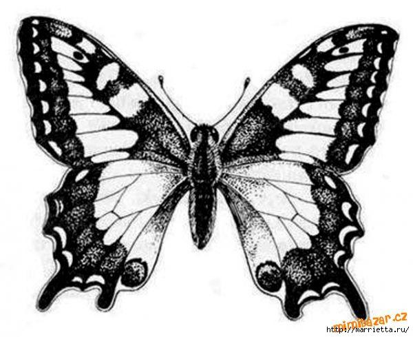 шаблоны бабочек (16) (600x489, 128Kb)