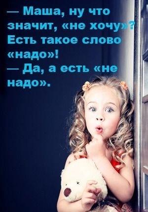 2804996_x_fbeaa191 (300x427, 39Kb)