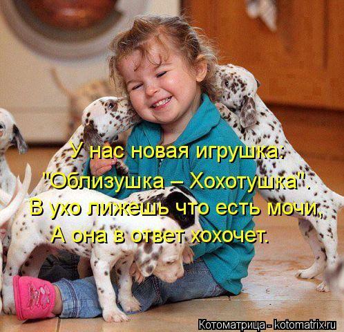 kotomatritsa_y0 (498x480, 62Kb)