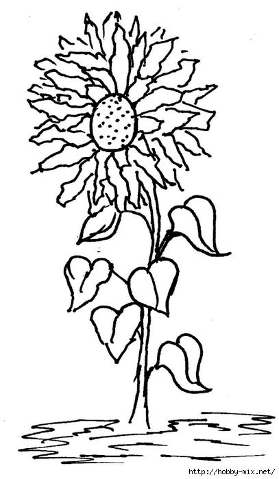 flower_pattern2 (407x700, 134Kb)