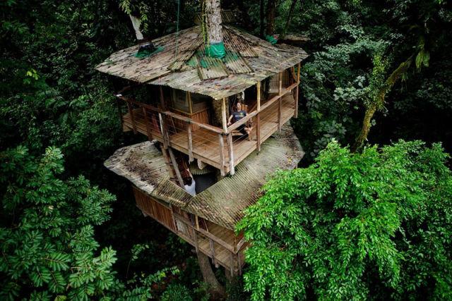 отель на деревьях 7 (640x427, 103Kb)