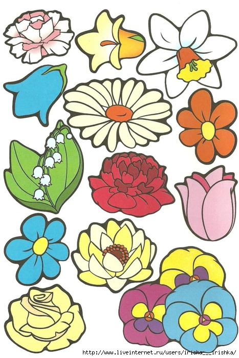 Цветные цветы для аппликации шаблоны