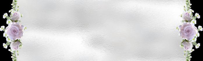 Белый 1 с сирен роз (700x210, 179Kb)