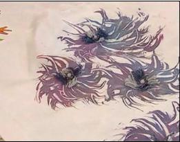 Украшение футболок своими руками. / Лепка, резьба, плетение, роспись, батик. / Новостной портал для творческих людей!