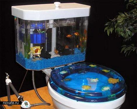 aquarium2 (470x375, 47Kb)