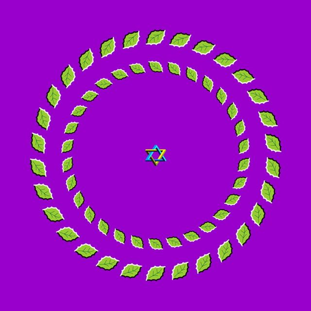 illusion5 (640x640, 40Kb)