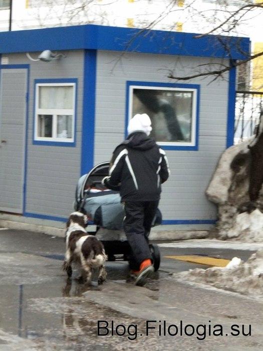 Детская коляска с ребенком и собака на прогулке /3241858_zima14 (525x700, 77Kb)