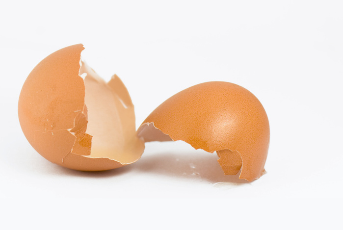 1259869_egg_shell (700x469, 55Kb)