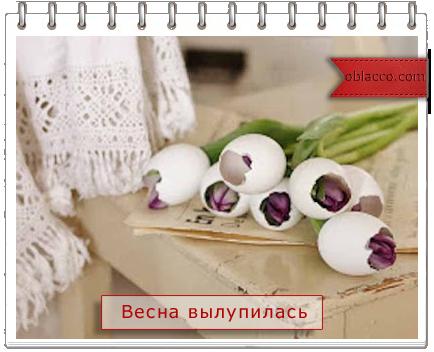 Тюльпаны в яичной скорлупе. Оригинальный букет к Пасхе своими руками. МК