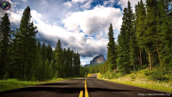 яркие краски мира дорога (700x393, 199Kb)