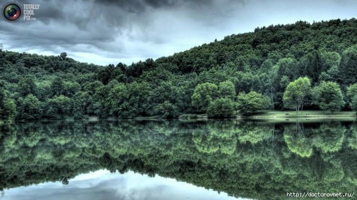 яркие краски мира отражение (700x393, 195Kb)