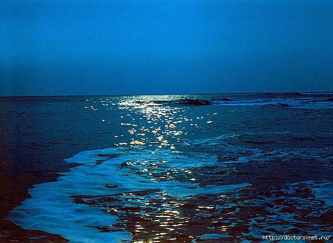 море (650x475, 305Kb)