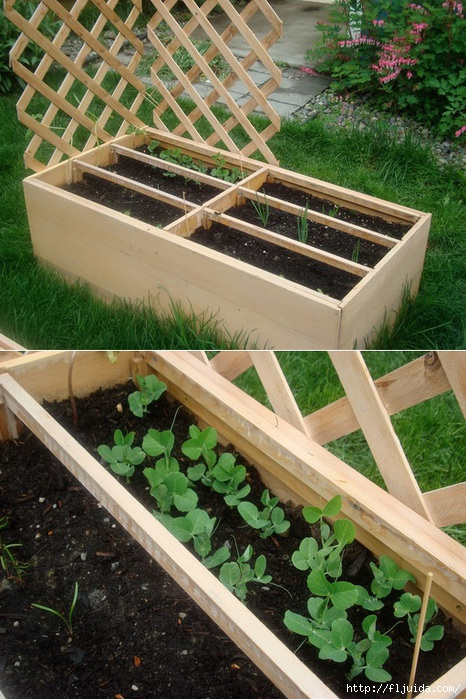 Recycled Dresser into raised vegetable garden bed (466x700, 276Kb)