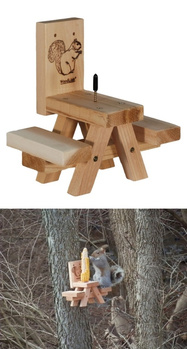 The Best Squirrel Feeder (374x700, 152Kb)