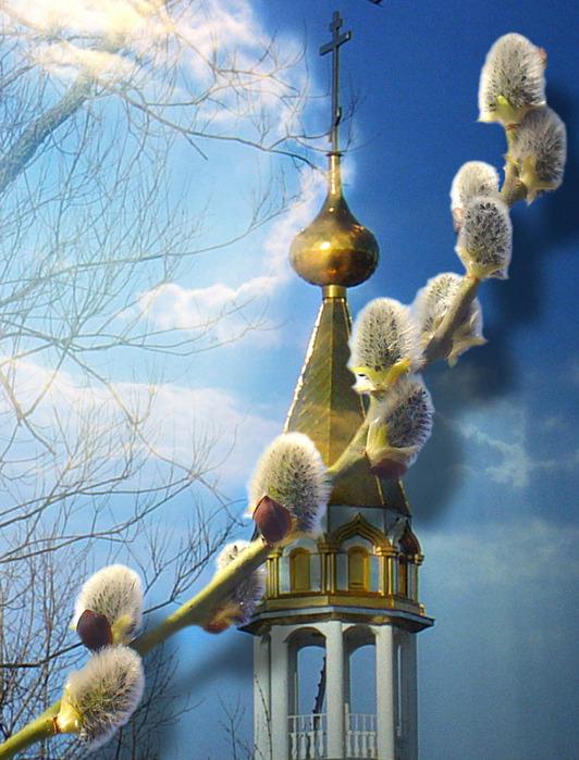 Приметы, обряды, заговоры и традиции празднования Вербного Воскресенья