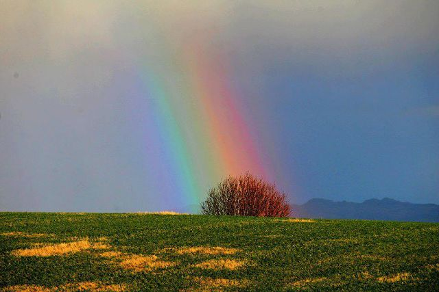 Яркая красота мира радуга  (640x427, 42Kb)