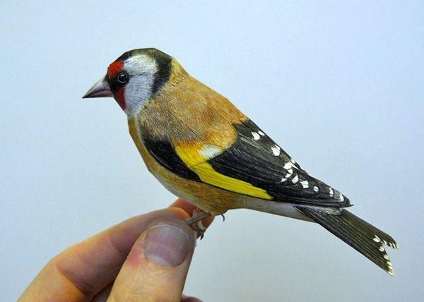 bird2 (600x428, 27Kb)