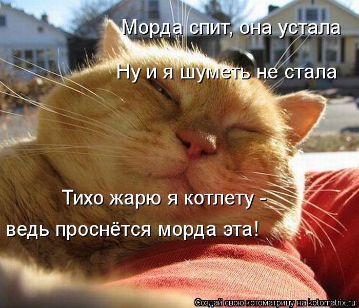 kotomatritsa_Q7J (700x601, 84Kb)