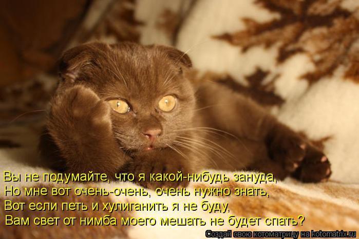 kotomatritsa_uO (700x466, 53Kb)