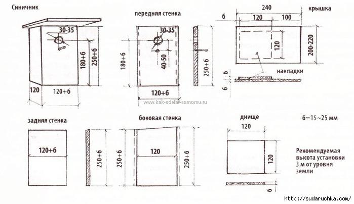 День птиц в Ростовском зоопарке. Новости на РостовМаме