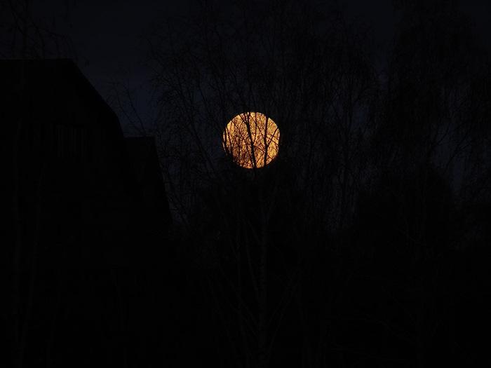 Большая луна/1415502_DSC00005_kopiya (700x525, 43Kb)