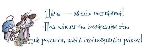 картинки с надписями приколы 2 (600x236, 25Kb)