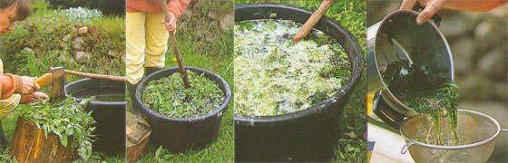 Приготовление-настоя-из-травы (560x180, 27Kb)
