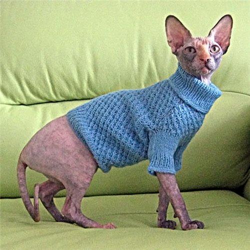 Схемы кошек для вязания.