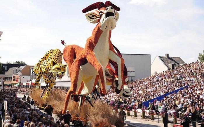 парад цветов в Зюндерте фото 2 (700x436, 141Kb)