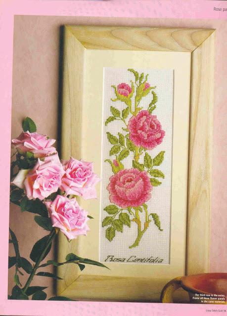 beautiful pink roses2 (459x640, 102Kb)