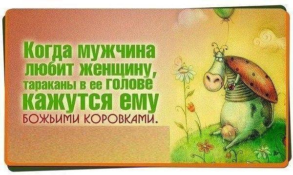smeshnie_kartinki_136645895920042013306 (600x359, 62Kb)