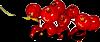 Бни (100x42, 5Kb)