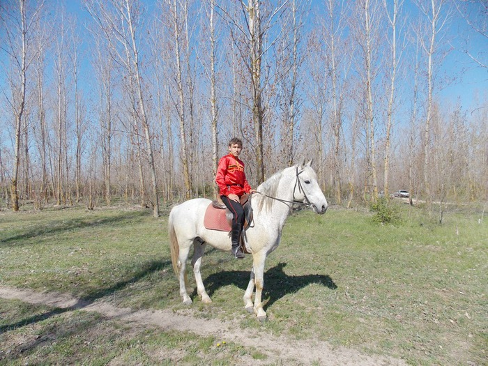 Алексей Т (700x525, 169Kb)