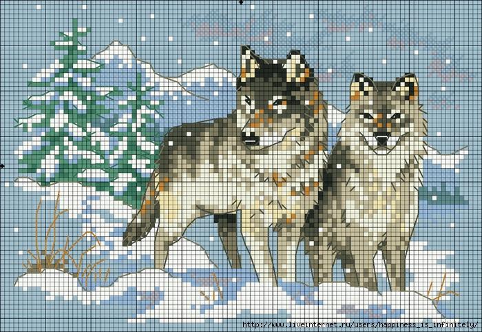 схема вышивки волк - Самое