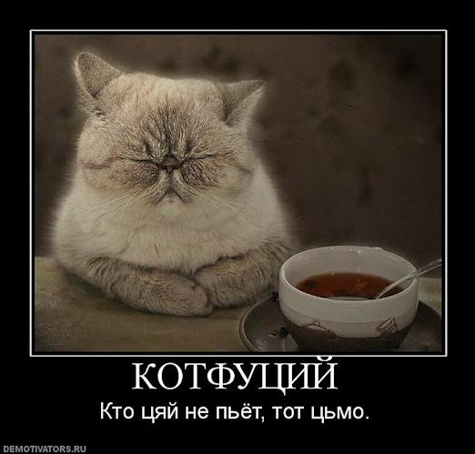 http://img0.liveinternet.ru/images/attach/c/8/100/324/100324264_cyay.jpg