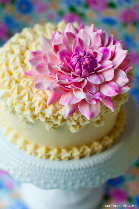 Хризантемы и георгины из сахарной мастики для украшения торта (5) (465x700, 225Kb)