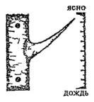 2 (133x144, 28Kb)