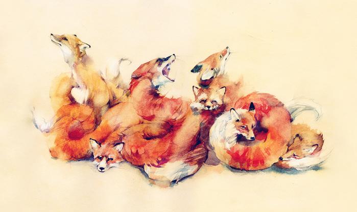 fox Дима Ребус (700x416, 300Kb)