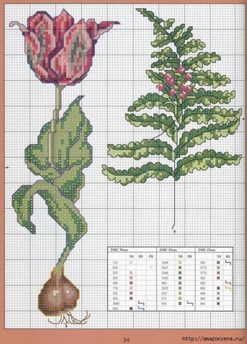 Отличный журнал вышивки Marie Barber - Cross-Stitch Florals (28) (503x700, 321Kb)