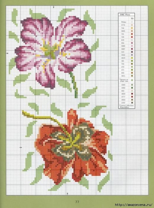 Отличный журнал вышивки Marie Barber - Cross-Stitch Florals (71) (520x700, 301Kb)