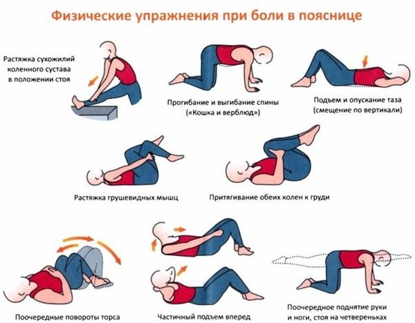 4716146_gimnastikadlasustavov (600x468, 49Kb)