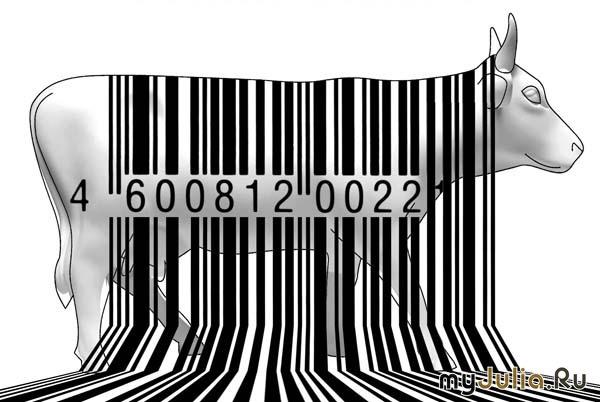 3138493_eeee (600x402, 73Kb)