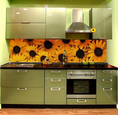 кухни дизайн (1) (492x480, 57Kb)