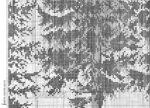 Превью 317 (700x504, 217Kb)
