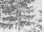 Превью 322 (700x511, 215Kb)