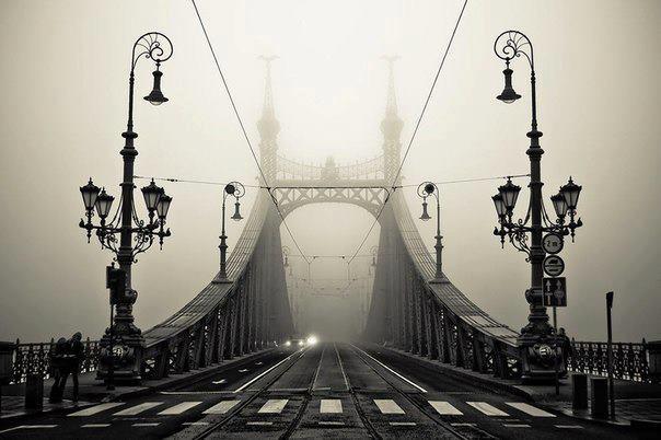 Мост в Будапеште. Венгрия (604x402, 39Kb)