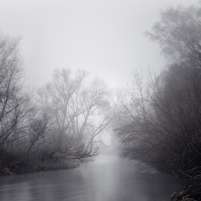 Харьзба в лесу 9 фотография